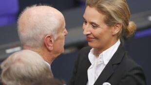 آلیس ویدل و آلبرشت گلازر، دو نماینده راست افراطی آلمان