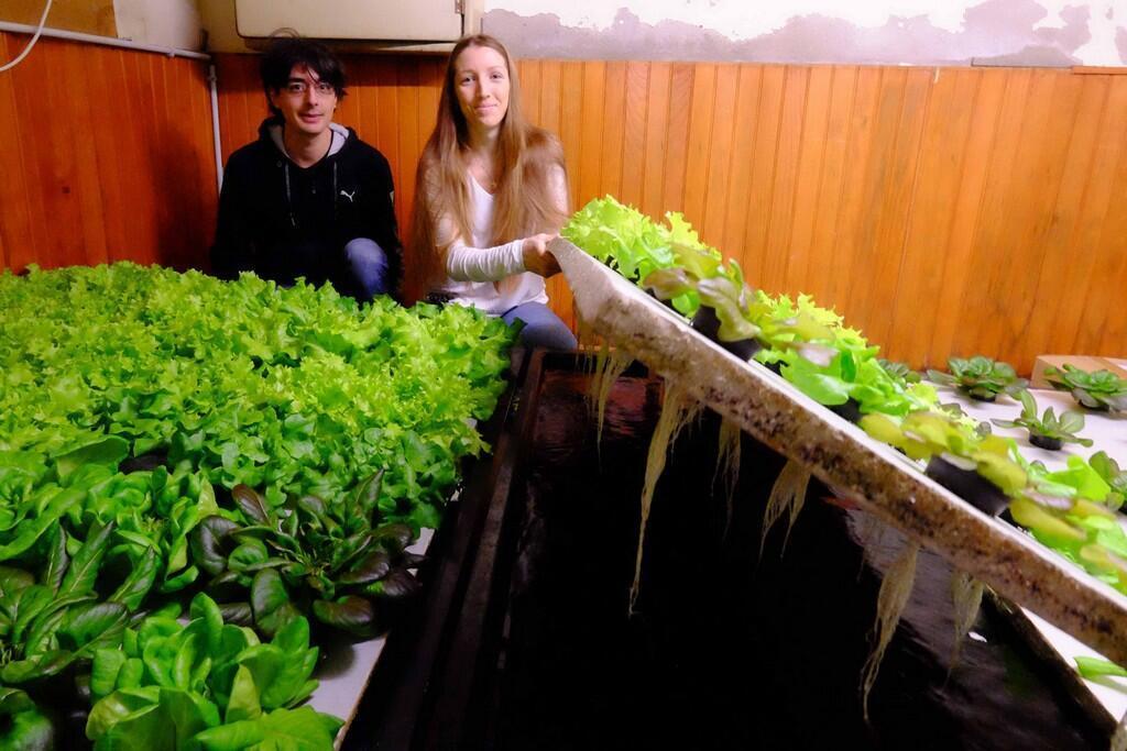 Florian Mary e Jessica Jamon mostram o funcionamento do projeto Osmose, que tem o objetivo de levar a aquaponia à escala comercial na França.