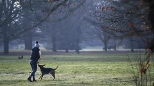Britain has seen an explosion in the number of dog thefts since the coronavirus pandemic hit