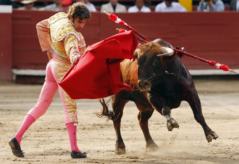 La corrida, spectacle emblématique et symbole culturel du pays, sera désormais interdite en Catalogne.