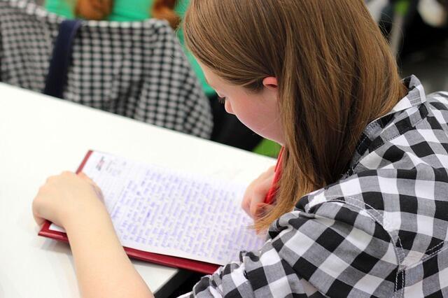 O ministério da Educação francês decidiu instituir o ditado obrigatório na Escola Elementar.
