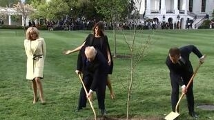 特朗普與馬克龍合栽橡樹              2018年4月