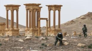 Palmyre en Syrie, après le départ du groupe EI, ici en avril 2016.