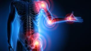 Certaines zones du corps humain sensibles aux rhumatismes et à l'arthrose.