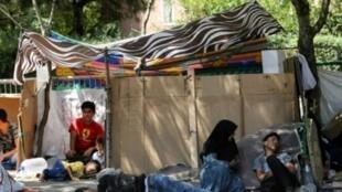 تعدادی از مهاجران افغان در یکی از پارکها در ترکیه
