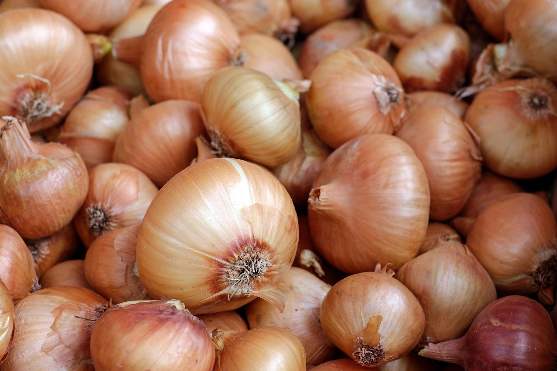 onions-1397037
