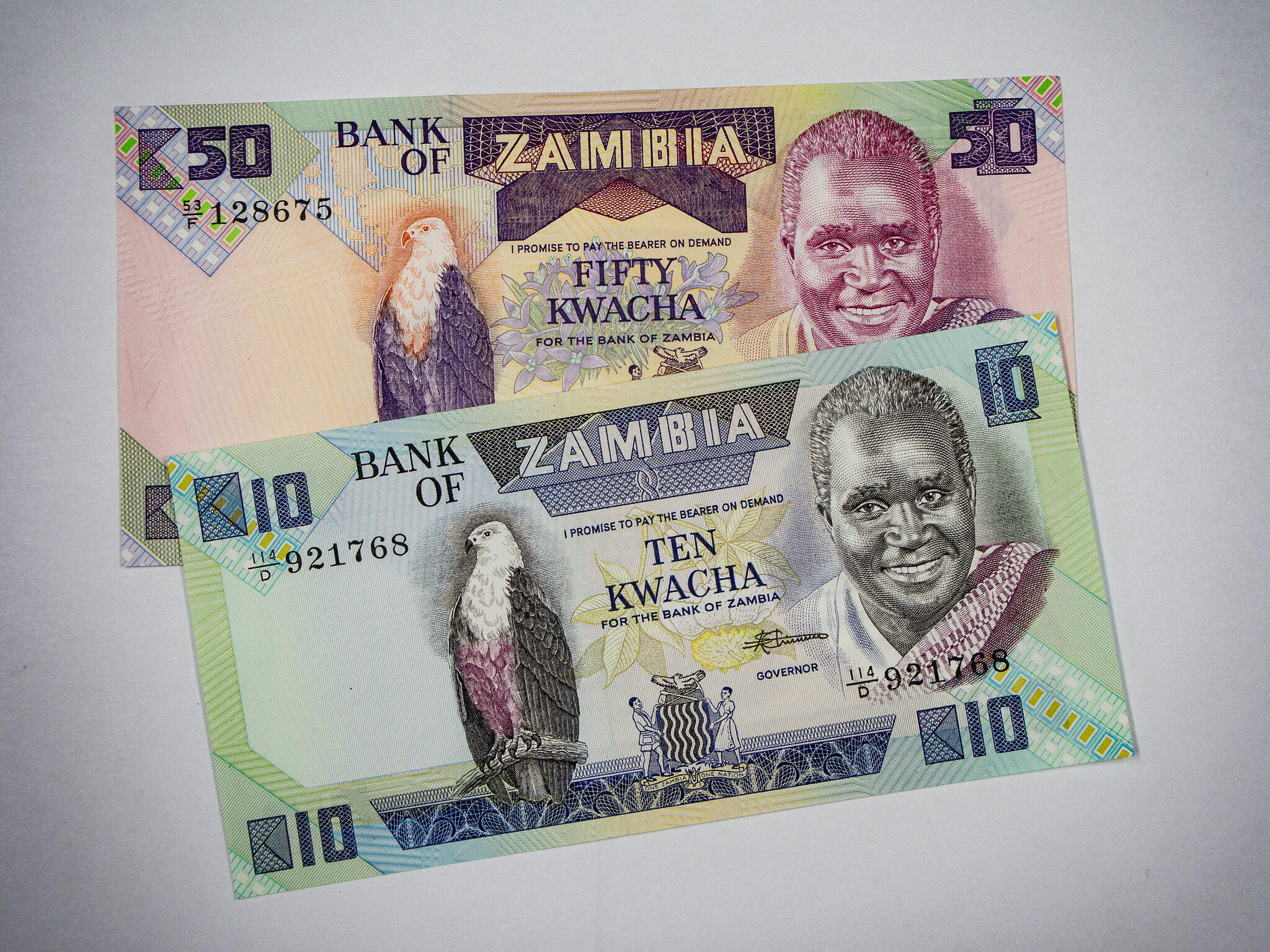 Des Kwachas zambiens, la monnaie de la Zambie (image d'illustration).