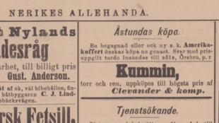 瑞典《尼瑞克日報》(Nerikes Allehanda)創立於1848年
