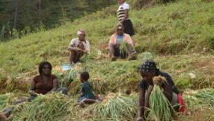 Des jeunes femmes en milieu rural en Haïti.