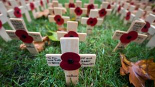 A l'approche du jouEn Grade-Bretagne, le coquelicot rouge symbolise les fleurs qui ont poussé sur les champs de bataille après les furieux combats de la Première Guerre mondiale.