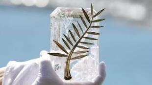 Главный приз Каннского фестиваля — Золотая пальмовая ветвь