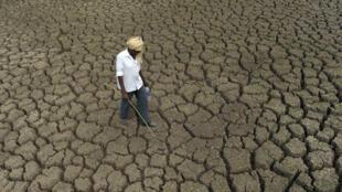 Plus de 300 millions d'Indiens sont affectés par la sècheresse qui sévit dans une partie du pays.