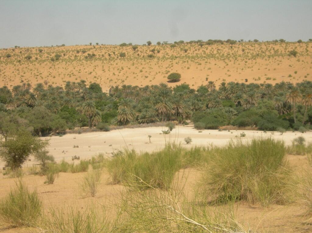 désert mao tchad wadi