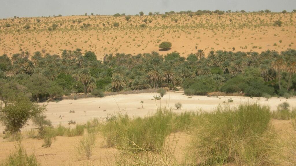Tchad : l'armée annonce une centaine de prisonniers après un affrontement avec le Fact