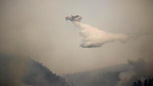 Лесной пожар перекинулся на национальный парк Доньяна, который является природным памятником ЮНЕСКО.