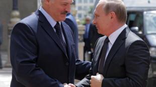 Le president Bielorusse Alexandre Lukashenko (G) souhaite la bienvenue à son homologue russe, Vladimir Poutine (D), lors d'une rencontre à Minsk en Bielorussie, le 8 Juin 2016.