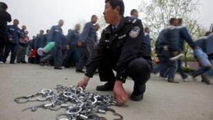 中国警察(资料图片)