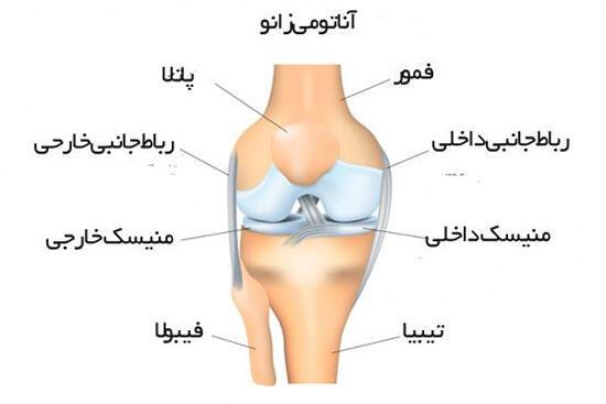 برای شنیدن توضیحات دکتر علیرضا نوری، جراح و اورتوپد در سوئد بر روی تصویر کلیک کنید.