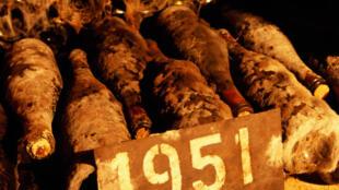 Celles-ci sont authentiques. Bouteilles de Bourgogne de 1951, restées sur le lieu de récolte.