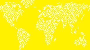 Détail de la brochure « Novembre numérique ». L'initiative internationale lancée par l'Institut français fêtera en novembre 2018 sa deuxième édition dans plus de 30 pays.