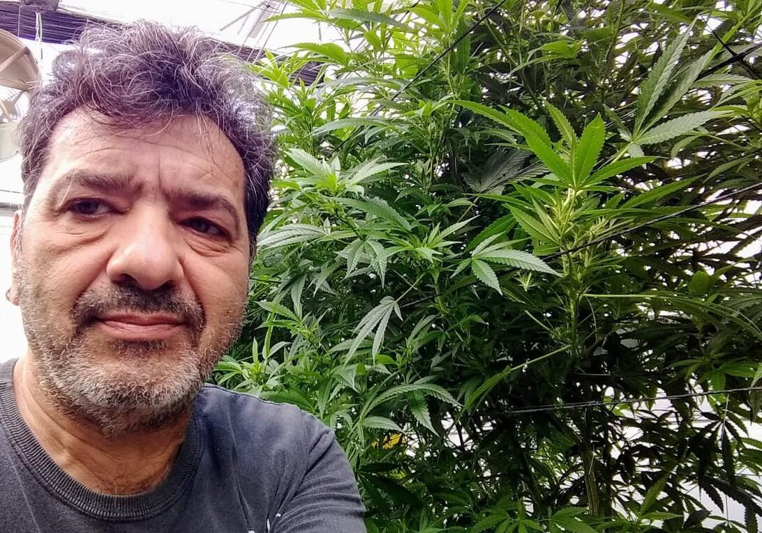O paulistano Silvio Scol com uma planta de cannabis (Crédito Silvio Scol)