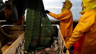 2020-12-10T181530Z_1739020331_RC2IKK9X7KOZ_RTRMADP_3_BRITAIN-EU-FRANCE-FISHING