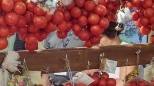 Variedad de tomates Regina