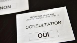A Notre-Dame-des-Landes, le « oui » l'a emporté avec 55% des voix.