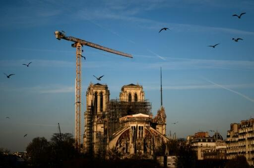 """The head of the Guild of French Architects has warned against """"seemingly brilliant solutions"""" which involve metal or concrete rafters as he urged the use of wood for reconstruction of Notre-Dame's fire-ravaged roof"""