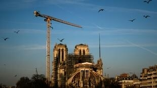 "The head of the Guild of French Architects has warned against ""seemingly brilliant solutions"" which involve metal or concrete rafters as he urged the use of wood for reconstruction of Notre-Dame's fire-ravaged roof"