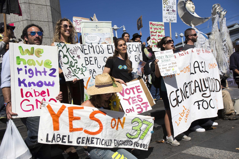 Un groupe de manifestants partisans de la proposition 37, une mesure de l'Etat de Californie qui rendrait obligatoire l'étiquetage des produits génétiquement modifiés.