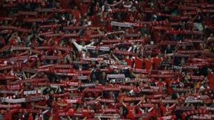Adeptos do Benfica a festejarem o título de Campeão 2013/2014.