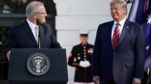 澳大利亞總理莫里森與美國總統特朗普資料圖片