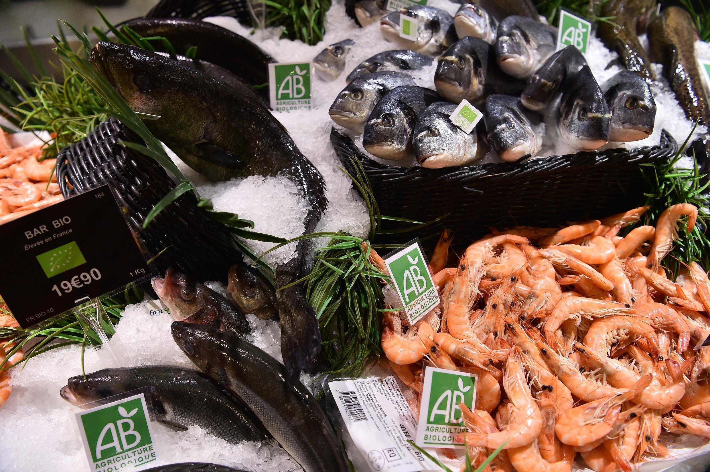 Биологические морепродукты в супермаркете, Франция