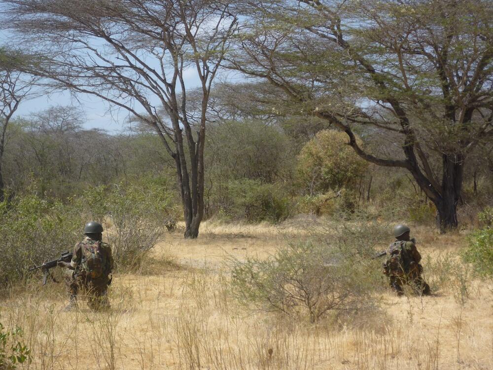 Troupes kényanes à la recherche des shebabs somaliens.
