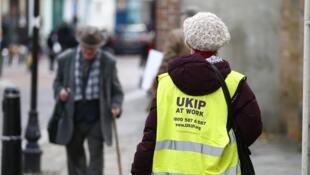 Selon l'institut Ipsos Mori, les électeurs du Ukip sont trois fois plus issus des rangs conservateurs que travaillistes.
