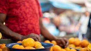 Trois tonnes d'oranges sont transportées par jour dans les zones de production.