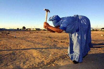 La désertification, un fléau pour l'Afrique