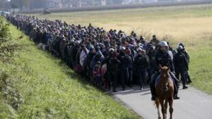 Grupo de migrantes guiados por policías cerca de Dobova, en Eslovenia, el pasado 20 de octubre de 2015.
