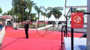 """戛纳影节期间,电影宫前红毯旁的标牌""""请勿在红地毯上自拍和拍照。谢谢! """""""