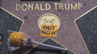 با نزدیک شدن موعد انتخابات، علاوه بر بازیگران و خوانندگان مشهور، گروهی از نویسندگان درجه اول آمریکایی نیز تبلیغ علیه ترامپ را وظیفۀ خود دانستهاند.