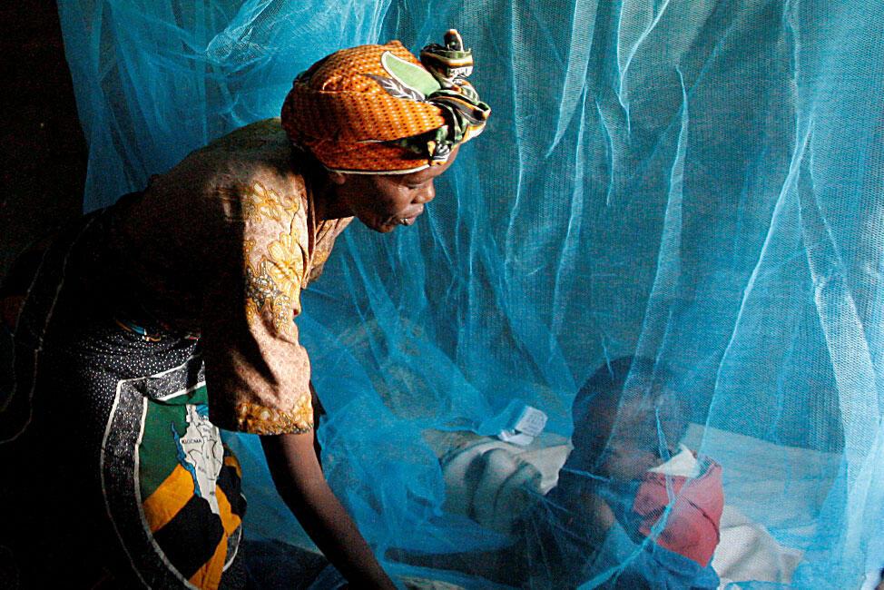 Chaque année, 3,3 milliards de personnes sont exposées au risque de paludisme.