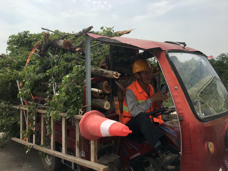 chinois edf biomasse