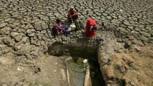 La lutte quotidienne pour obtenir une maigre ration d'eau est le lot de nombreux habitants de Chennai, en Inde.