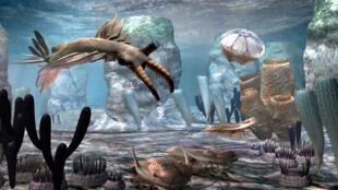 """នៅក្រោយយុគសម័យទឹកកក ជីវិតលើភពផែនដីបានស្គាល់នូវការវិឌ្ឍ និងរីកលូតលាស់យ៉ាងខ្លាំង ក្នុងសម័យកាល ដែលគេឲ្យឈ្មោះថា """"Cambrian Explosion"""""""