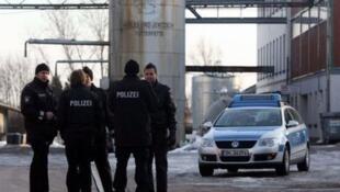 Polícia alemã apreende ovos contaminados