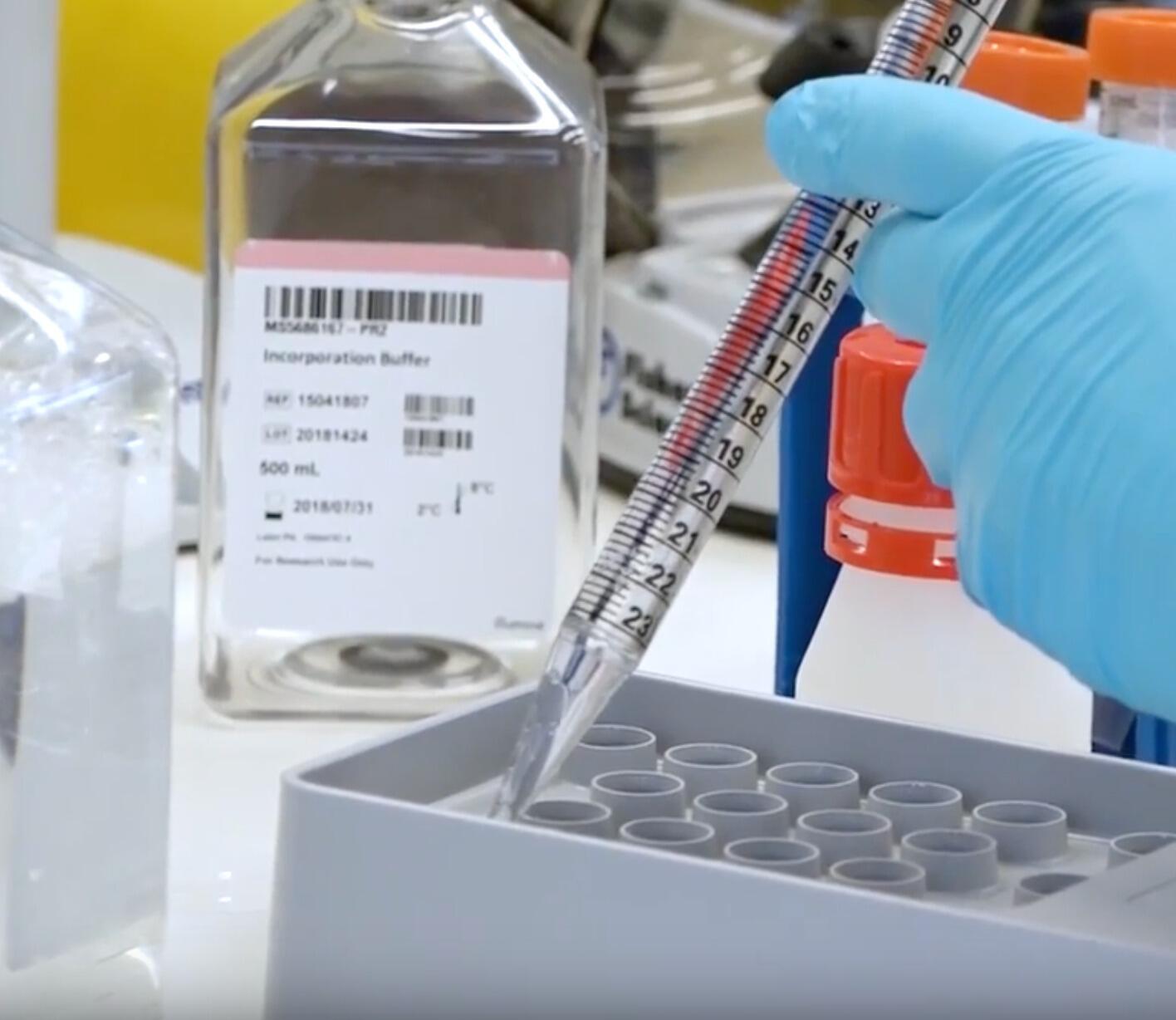 Laboratorio de Microbilogía Universidad de Burgos (España)