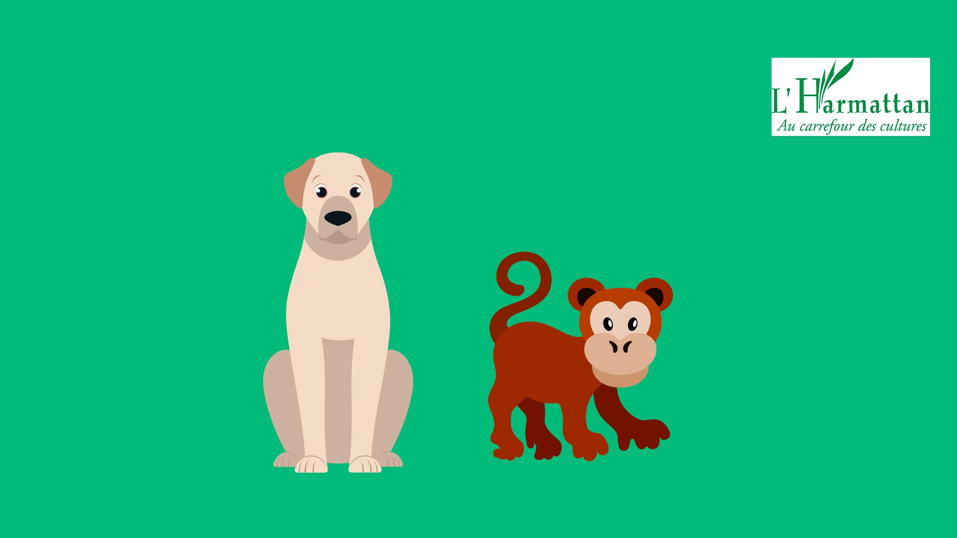 Le chien et le chimpanzé