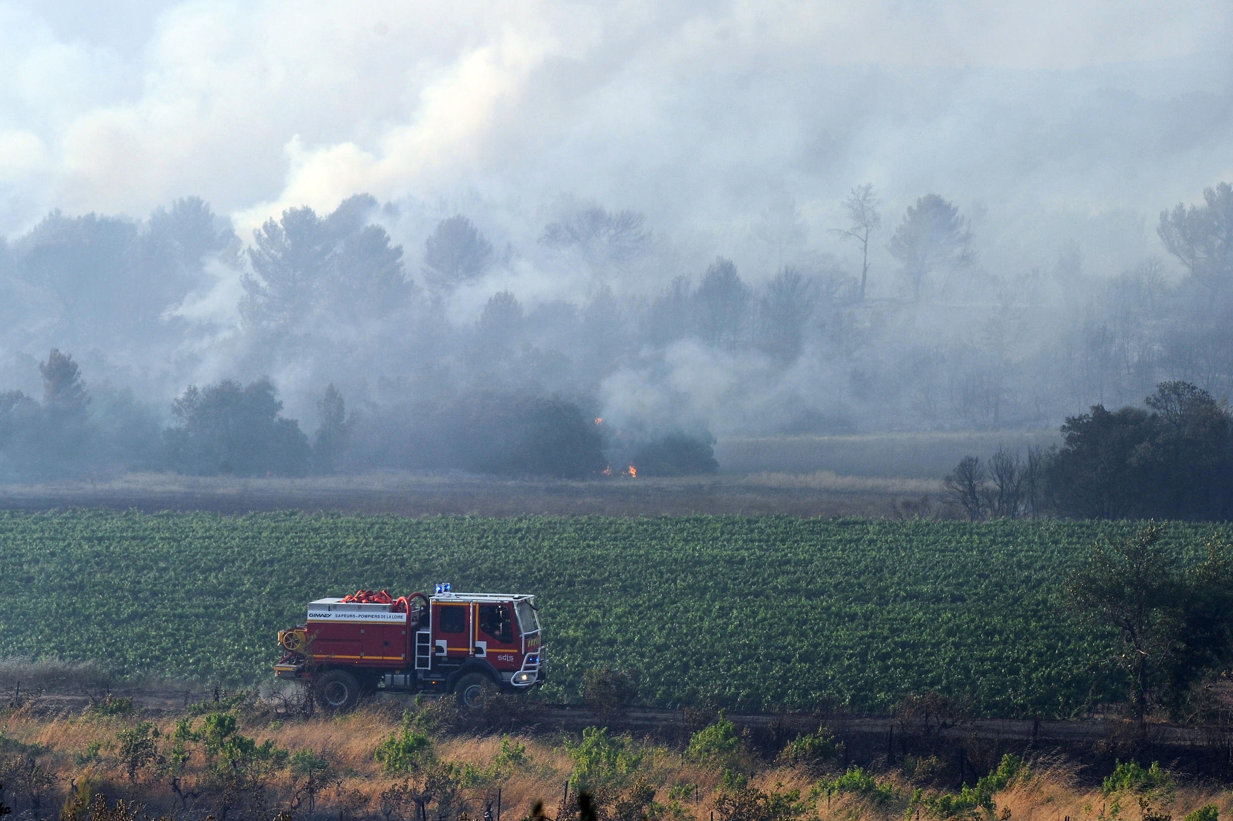 Firefighters try to extinguish the forest fire in Saint Cannat, near Aix en Provence