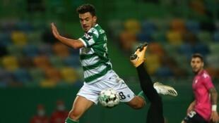 Pedro Gonçalves - Sporting CP - Futebol - Desporto - Football - Sporting Clube de Portugal